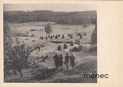 Naiset palaamassa pellolta
